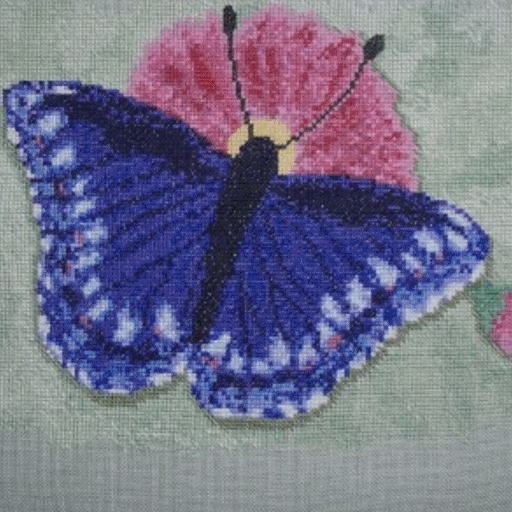 BLUE BUTTERFLY POSTCARD Cross stitch version of one of Ruth's paintings.